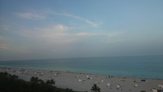 Royal Palm South Beach Miami, A Tribute Portfolio Resort : View from our room on the 12th floor.