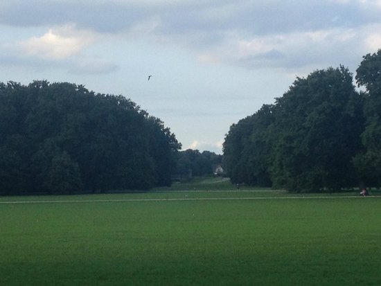 Bürgerpark: panorama