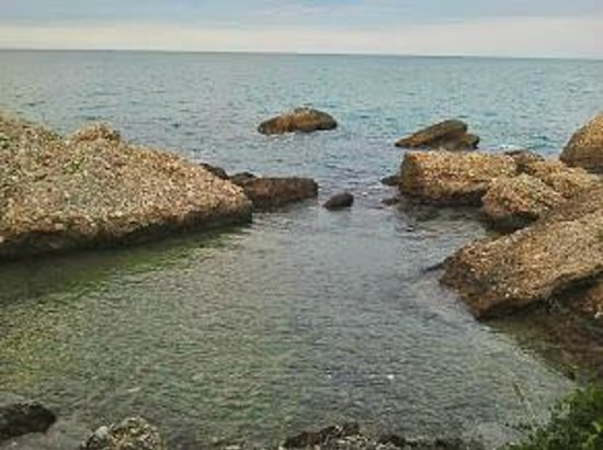Camping Residence Uliveto: La caletta, acqua bassa e fondale pieno di anemoni...