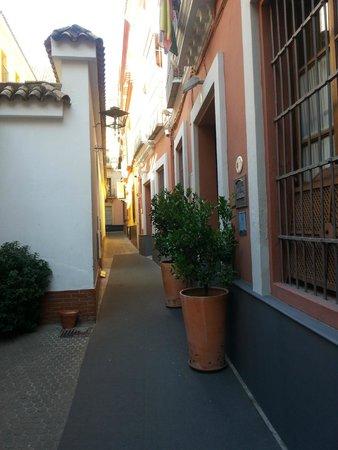 Hotel Amadeus: Hotel entrance
