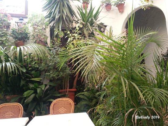 Hostal Torre de Guzman: Patio interior del hotel