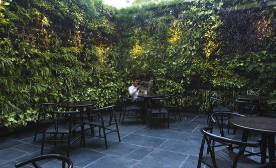 Courtyard Ahmedabad: Java+ Vertical Garden
