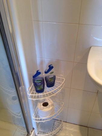 Minto Guest House: Already used toiletries!!!