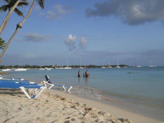 Dreams La Romana Resort & Spa: spiaggia