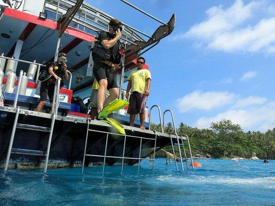 No Gravity Dive Center: Jump
