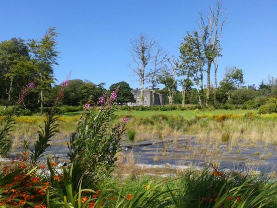 Unusual Alpine Garden Overlooking Sligo Bay  Picture Of Lissadell House  With Marvelous Lissadell House With Astounding Modern Minimalist Garden Ideas Also Suffolk Garden Show In Addition Cheap Garden Shoes And Nursery Gardens As Well As Covent Garden New Restaurants Additionally How To Make A Chinese Garden From Tripadvisorcouk With   Marvelous Alpine Garden Overlooking Sligo Bay  Picture Of Lissadell House  With Astounding Lissadell House And Unusual Modern Minimalist Garden Ideas Also Suffolk Garden Show In Addition Cheap Garden Shoes From Tripadvisorcouk