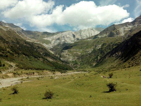 Valle de Pineta: Lo llanos de la Larri