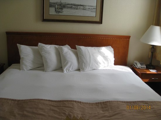 Lakeview Inns & Suites - Okotoks : King size bed
