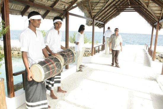 Makunudu Island: Встреча важных гостей