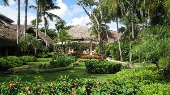 Viva Wyndham Dominicus Beach: Receptie