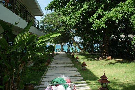 Paradise Resort Phi Phi: Дворик возле 2ч этажного корпуса
