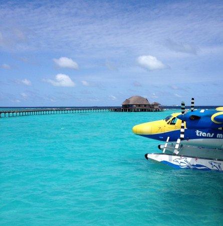 The Sun Siyam Iru Fushi Maldives: Iru Fushi
