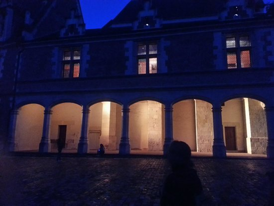 Chateau Royal de Blois : son et lumiere
