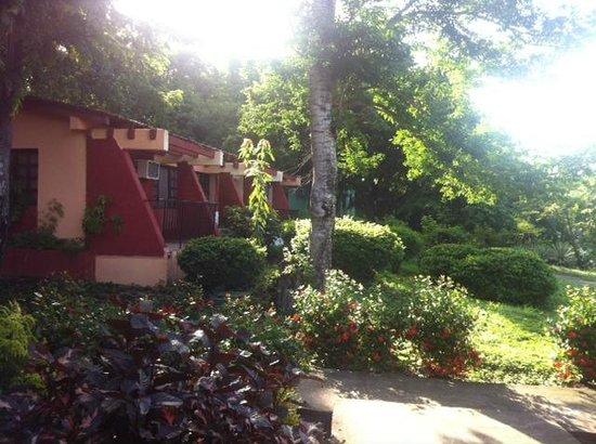 Villa Guajimico: Jardin