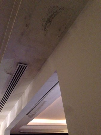 Hani Royal Hotel: Royal suite 610, smell's bad because of this. And it's dripping on the floor making it slippery