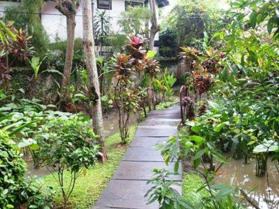 Tegal Sari : Path