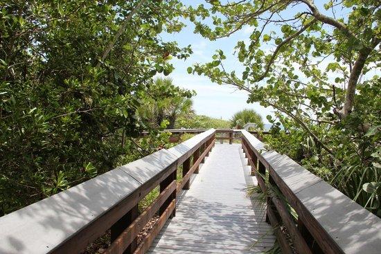 Barefoot Beach Preserve : boardwalk naar het strand toe
