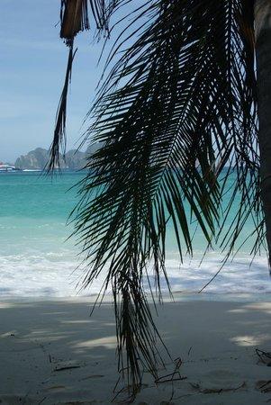 Paradise Resort Phi Phi: На пляже