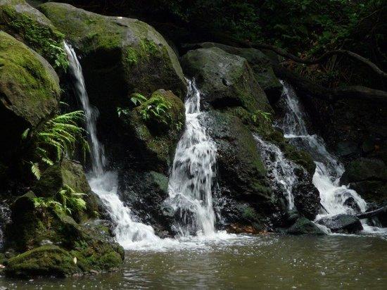 Blue Hawaii Photo Tours: waterfall