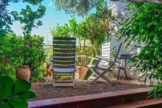 Le Roquebrune: Το μπαλκόνι μας !! Ο προσωπικός μας κήπος.
