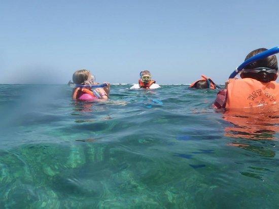 Wet Set Diving Adventures: just got in