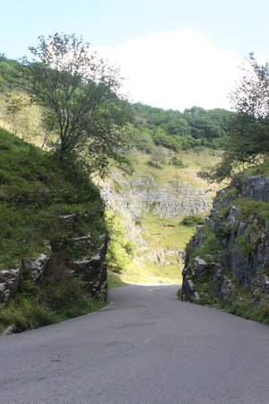 View from cabin picture of cheddar woods resort spa - Cheddar gorge hotels with swimming pools ...