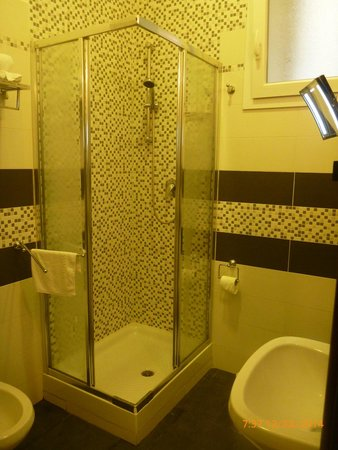 Roman Residence Inn : Shower