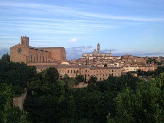 Piazza del Campo : Siena