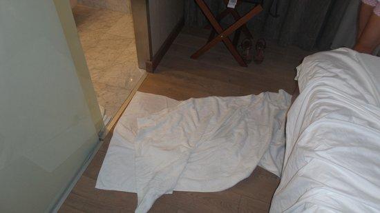 Boutique Saint Sophia Hotel: Leaky shower. Luckily floors were wooden.