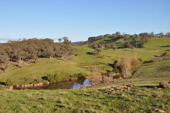 Porcupine Ridge Estate : view