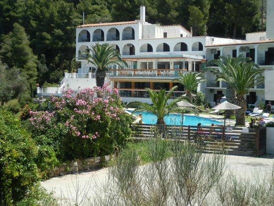 Hotel Punta Club: vista dell'hotel dall'esterno,dalla stradina che porta alla spiaggia