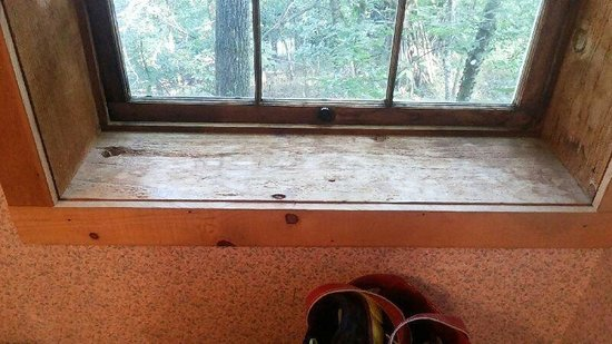 Enchanted Cottages: Filthy window sill