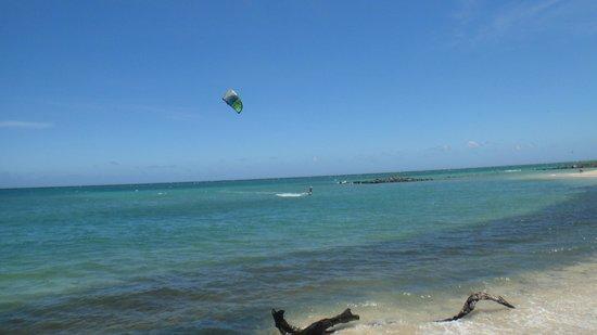Action Sports Maui: Kite beach Maui