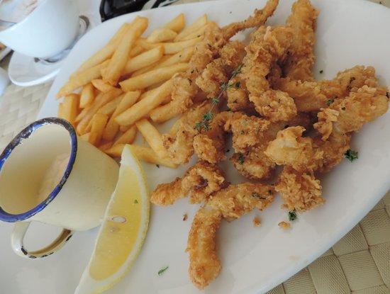 Geelbek : Calamari