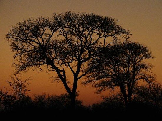 Gomo Gomo Game Lodge: Sunset at the evening sundowners of late safari