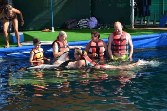 DolphinPark Marmaris: swim with the dolphin