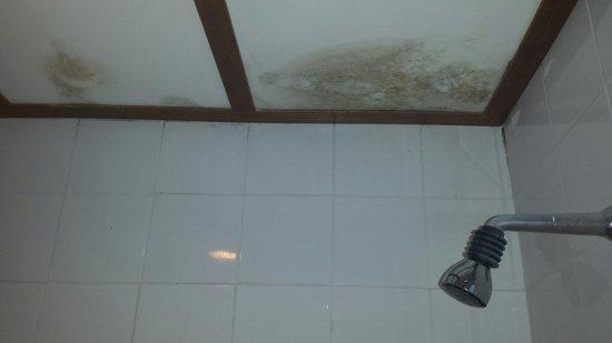 Royal Phuket City Hotel: Techo de lux.  Con humedades y papel higiénico tapa agujeros