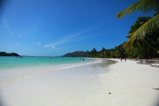 Paradise Sun : 绵长沙滩