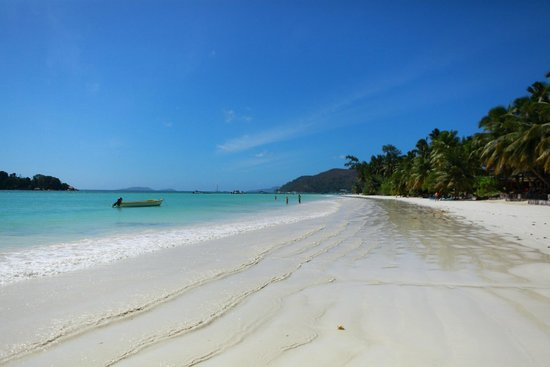 Paradise Sun : 海滩