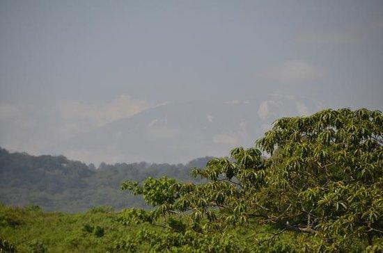 Twiga Lodge: View of Kili