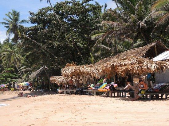Palm Paradise Cabanas: Strand