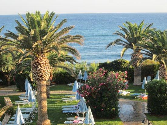 Creta Star Hotel : Les jardins