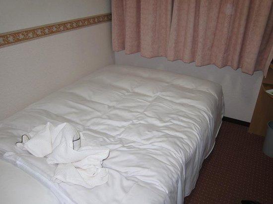Hotel Alpha-One Akita: 狭いですが、寝るだけなら十分