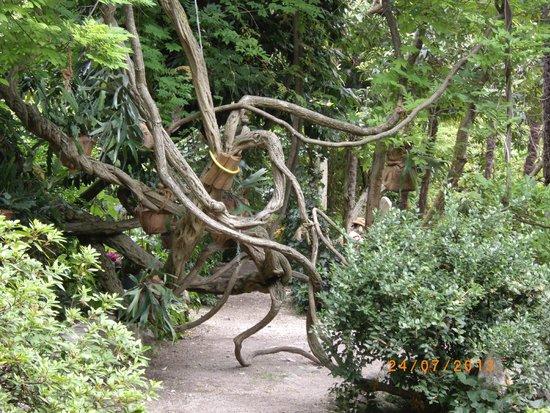 Heller Garden: Natur