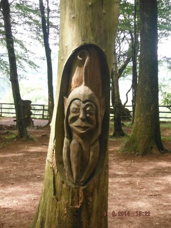Castell Coch: CARVINGS IN /ON THE WOODS AND TRAIL