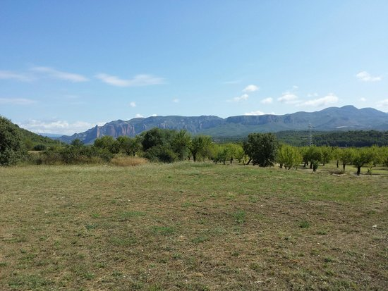 Alen d'Aragon: Hotel and grounds