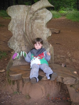 Castell Coch: SEAT IN THE WOODS