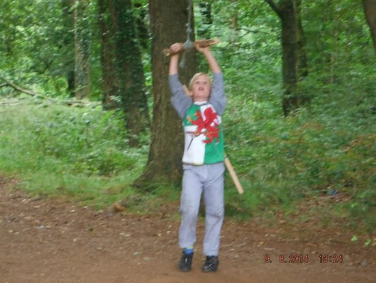 Castell Coch: SWING IN WOODS