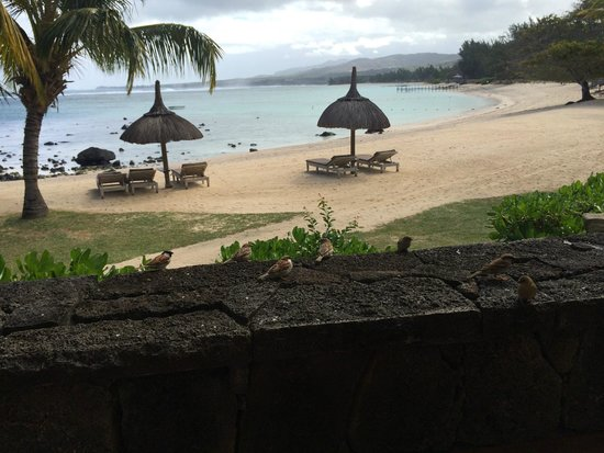 Shanti Maurice - A Nira Resort: view from the restaurant
