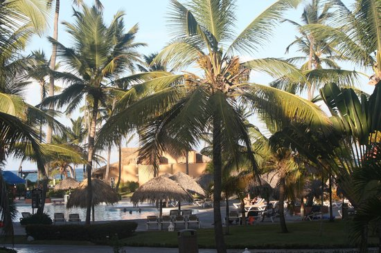Punta Cana Princess All Suites Resort & Spa : VUE DU BALCON DE LA CHAMBRE